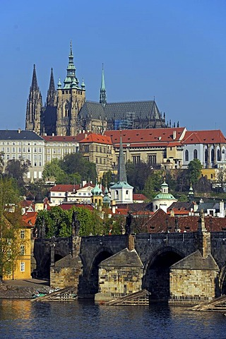 View over the Vltava River on the Charles Bridge and St. Vitus Cathedral in the early morning, Mala Strana, Prague, Bohemia, Czech Republic, Europe