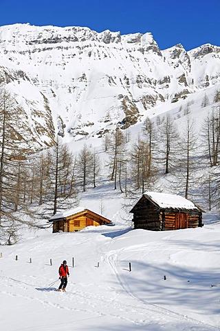 Skiers descending, Grosse Fleisstal valley near Heiligenblut, National Park Hohe Tauern, Carinthia, Austria, Europe