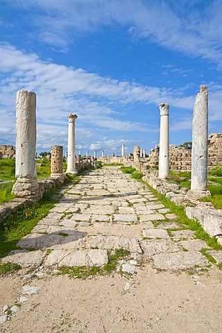 Roman archaeological site of Salamis, Turkish part of Cyprus