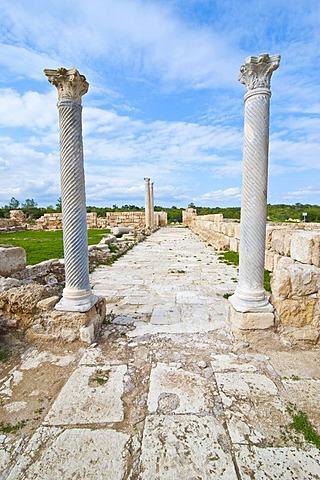 The Roman archaeological site of Salamis, Turkish part of Cyprus