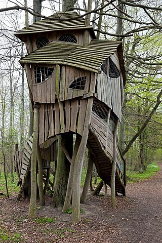 A crooked tree house in the woods