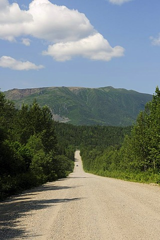 Unpaved road through the Parc national de la Gaspesie national park in the Chic-Choc Mountains, Gaspesie or Gaspe Peninsula, Quebec, Canada