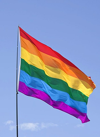 Rainbow flag, international gay and lesbian symbol