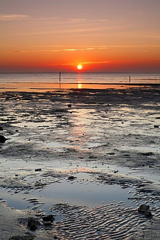 Sunrise at the Wadden Sea at low limit, Texel Island, Holland, Netherlands, Europe