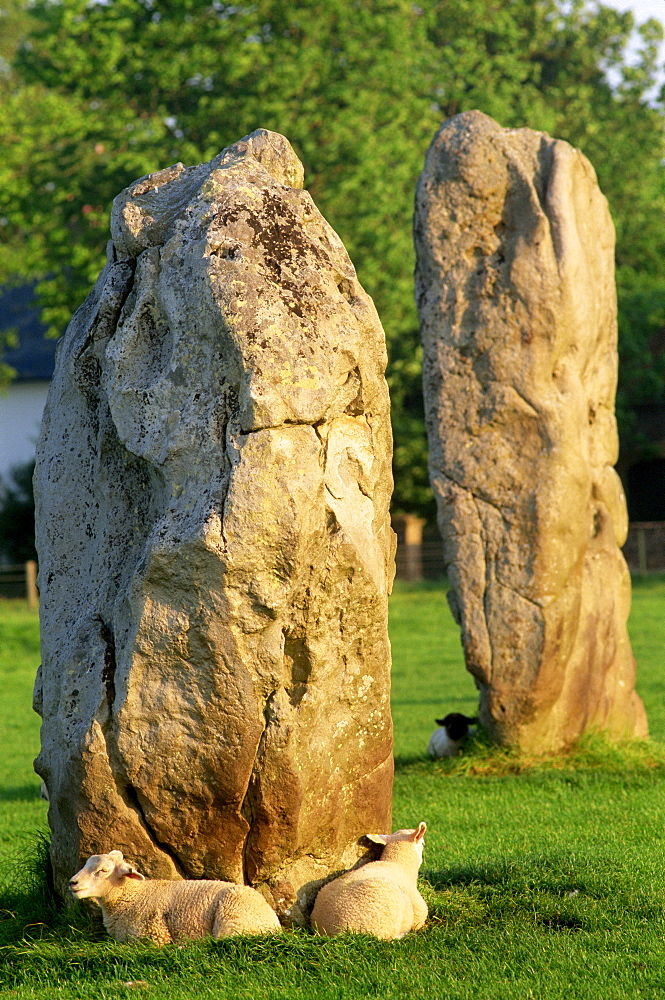 Avebury Stone Circle, UNESCO World Heritage Site, Avebury, Wiltshire, England, United Kingdom, Europe