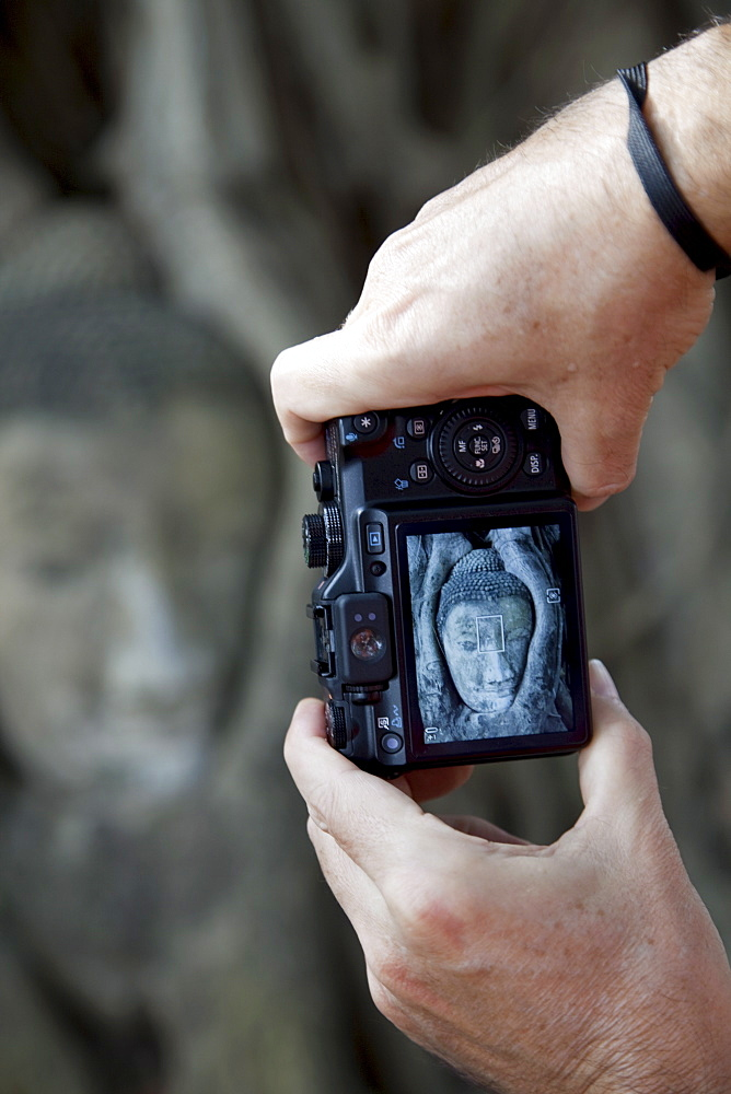 Tourist taking picture of Buddha head in Wat Mahathat, Ayutthaya Historical Park. UNESCO World Heritage Site, Ayutthaya, Thailand, Southeast Asia, Asia