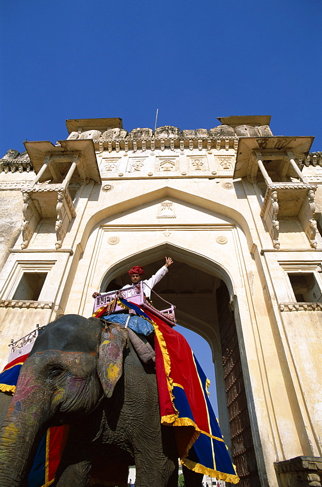 Decorated elephant walking through gateway, Amber Fort, Jaipur, Rajasthan, India, Asia