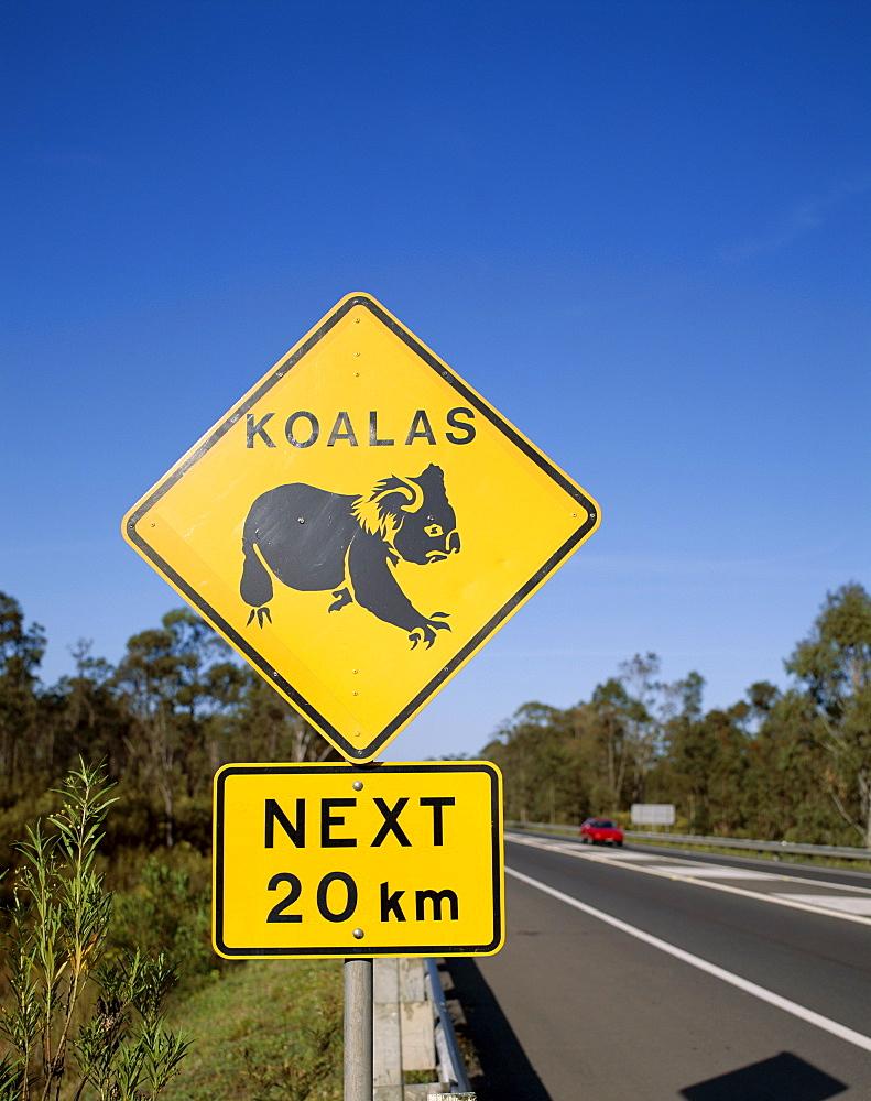 Koala road sign, Queensland, Australia, Pacific