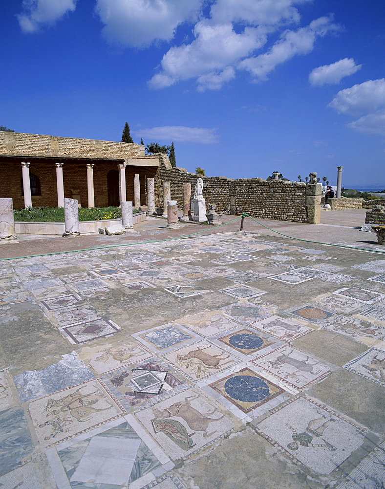 Mosaic floor, The Roman Villa, Carthage, UNESCO World Heritage Site, Tunis, Tunisia, North Africa, Africa