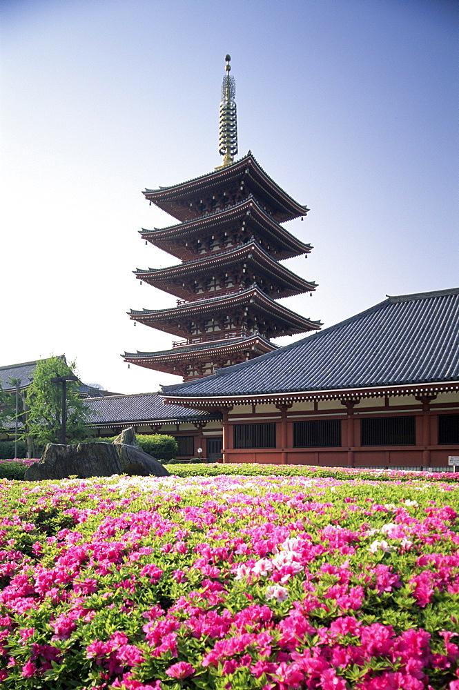Asakusa Kannon Temple, Tokyo, Japan, Asia