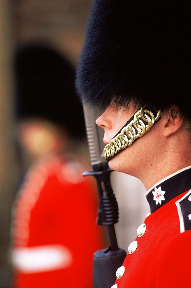 Guard at St. James's Palace, London, England, United Kingdom, Europe
