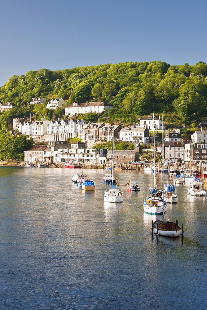 Morning light on the River Looe at Looe, Cornwall, England, United Kingdom, Europe - 835-9