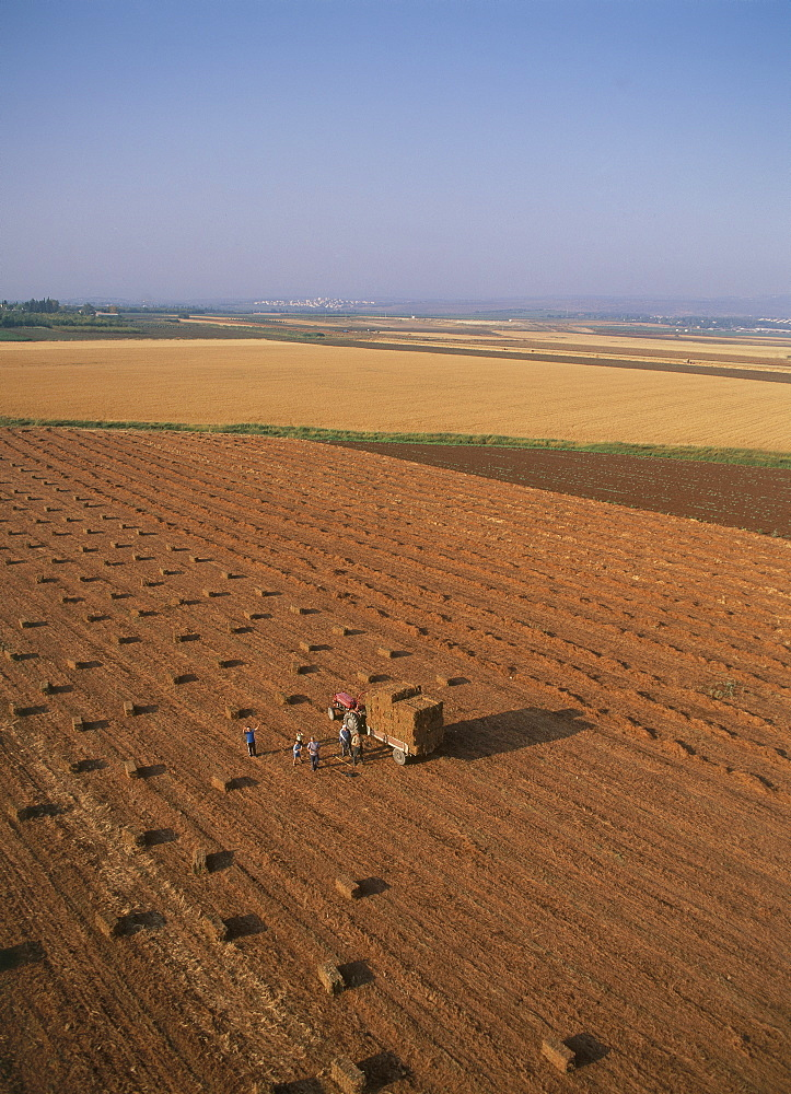 Aerial photograph of an agriculture field in the western Galilee, Israel