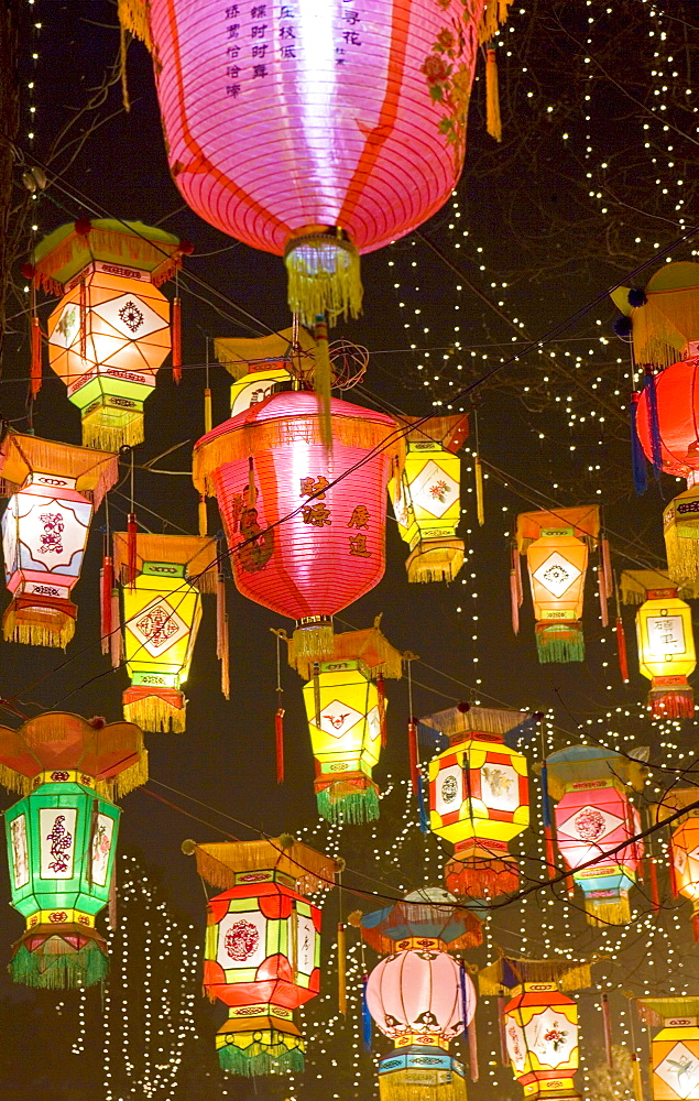 Chinese park decorated with bright and colorful hand-made lanterns during Chinese New Year, Chengdu, Sichuan, China, Asia - 839-49