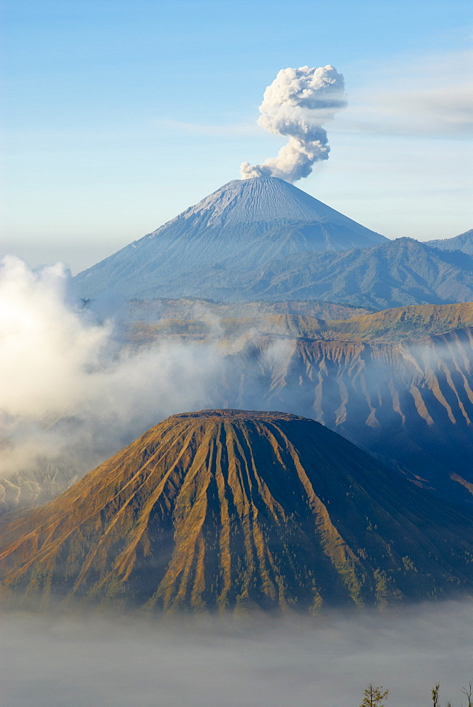 Mount Bromo, a volcano reaching 2392m, and Mount Semeru at 3676m early in the morning, Java, Indonesia, Southeast Asia, Asia - 841-16