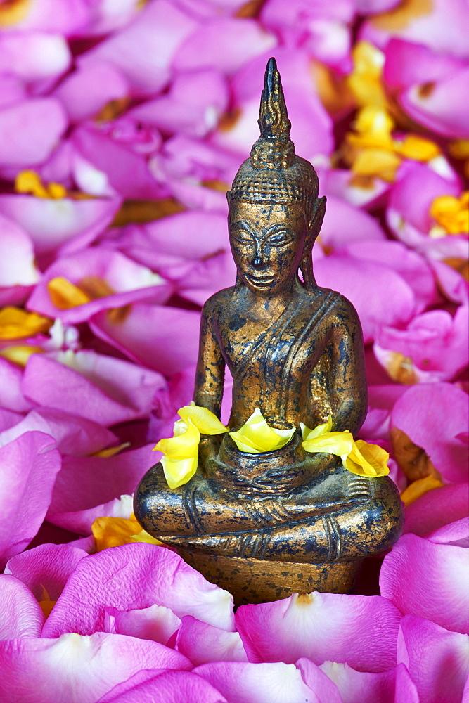 Statue of Buddha, Bangkok, Thailand, Southeast Asia, Asia - 841-453