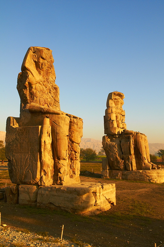 Colossi of Memnon, carved to represent the 18th dynasty pharaoh Amenhotep III, West Bank of the River Nile, Thebes, UNESCO World Heritage Site, Egypt, North Africa, Africa
