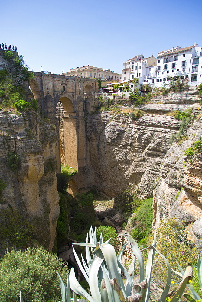 View of Ronda and Puente Nuevo from Jardines De Cuenca, Ronda, Andelusia, Spain, Europe - 844-12743