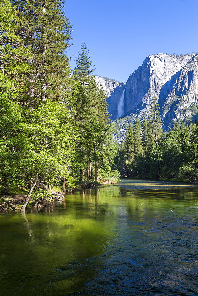View of Merced River and Upper Yosemite Falls, Yosemite National Park, UNESCO World Heritage Site, California, United States of America, North America
