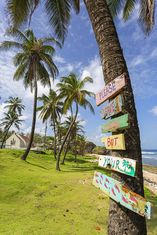 Beach, Bathsheba, St. Joseph, Barbados, West Indies, Caribbean, Central America