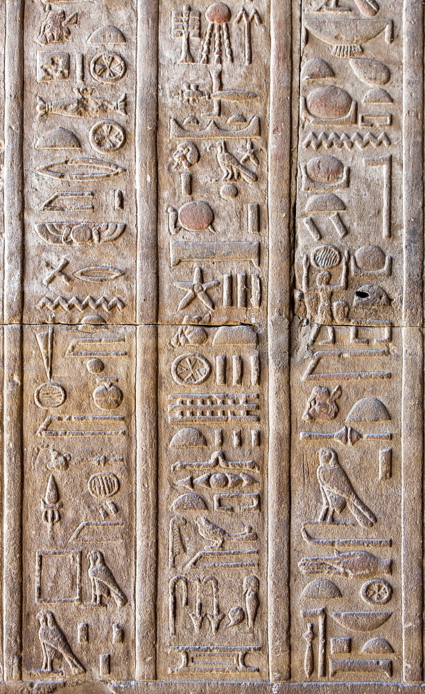 Hieroglyphic relief inside the Temple of Horus, Edfu, Egypt, North Africa, Africa