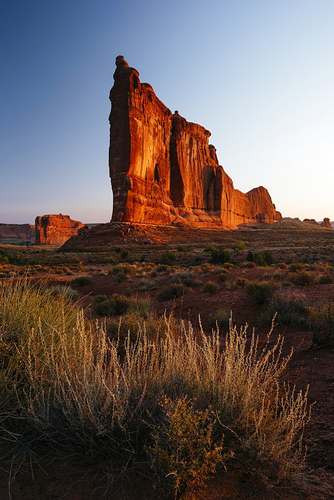 Courthouse Towers at dawn, Arches National Park, Utah, United States of America, North America
