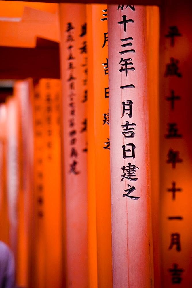 Vermillion Torii Gates, Fushimi-Inari Taisha, Kyoto, Japan, Asia
