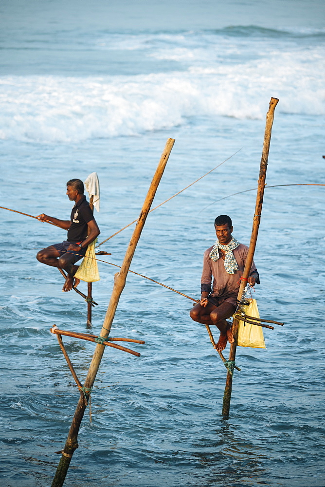 Stilt Fishermen at dawn, Weligama, South Coast, Sri Lanka, Asia