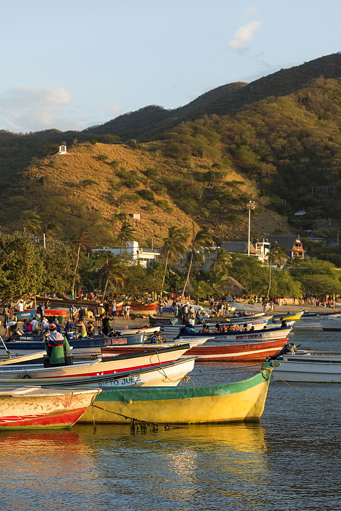 Fishing boats, Taganga, Magdalena Department, Caribbean, Colombia, South America - 848-2153