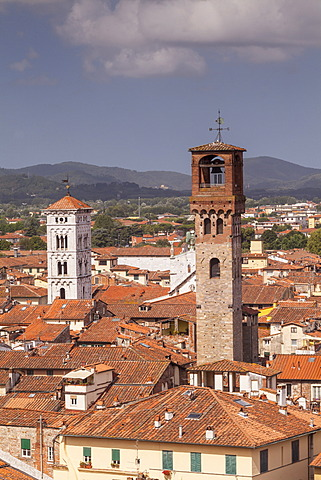 The rooftops of the historic centre of Lucca, Tuscany, Italy, Europe