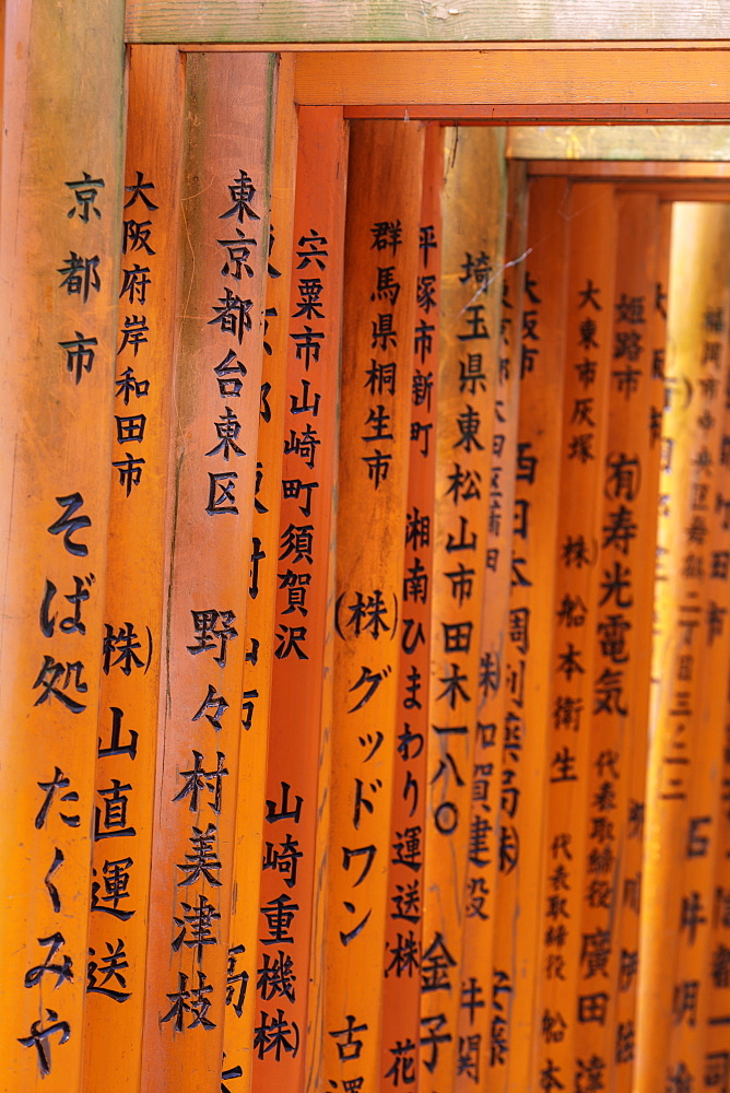 Vermilion torii gates at the Fushimi Inari Shrine in Kyoto, Japan, Asia