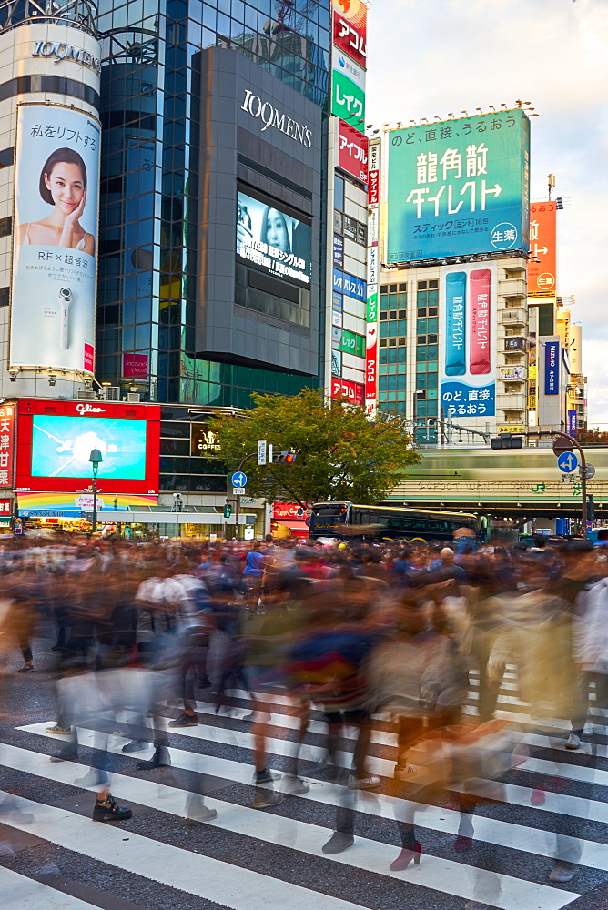 Crowds captured with blurred motion, walking through the Shibuya Crossing, Tokyo, Japan, Asia