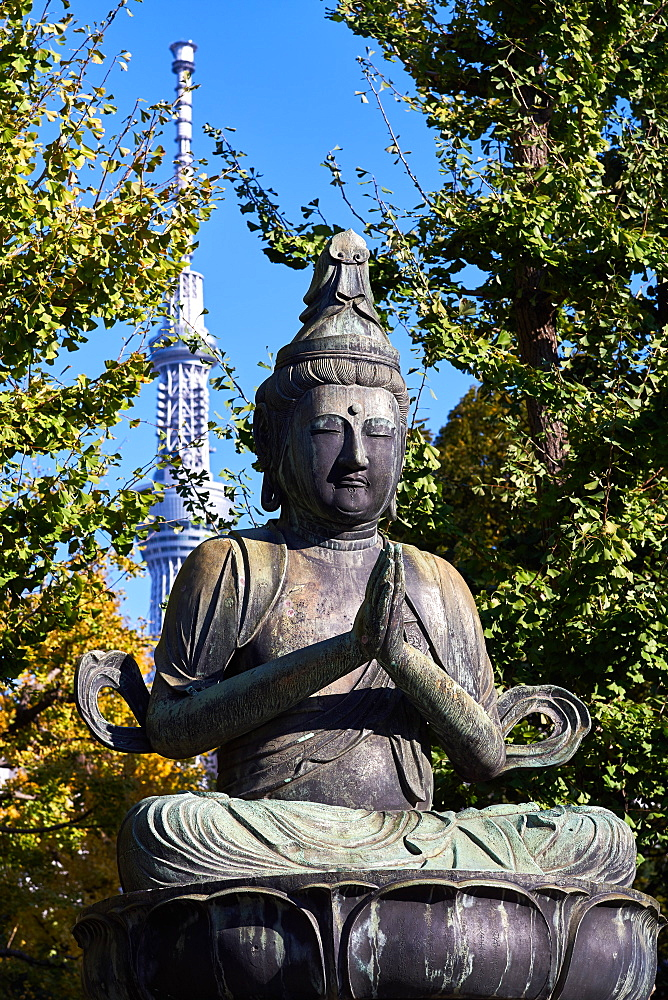 Kannon Bosatsu Buddha sculpture at the Sensoji Temple with the Sky Tree Tower in the background, Asakusa, Tokyo, Japan, Asia - 851-832