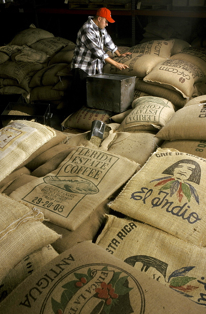 A man stands in the middle of coffee bags ready to be shipped for exportation.