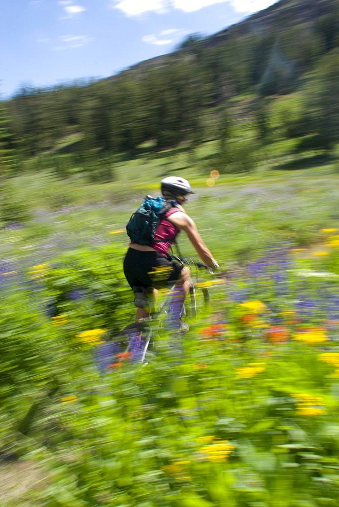 Mountain biking at Kirkwood Resort. Lake Tahoe, CA