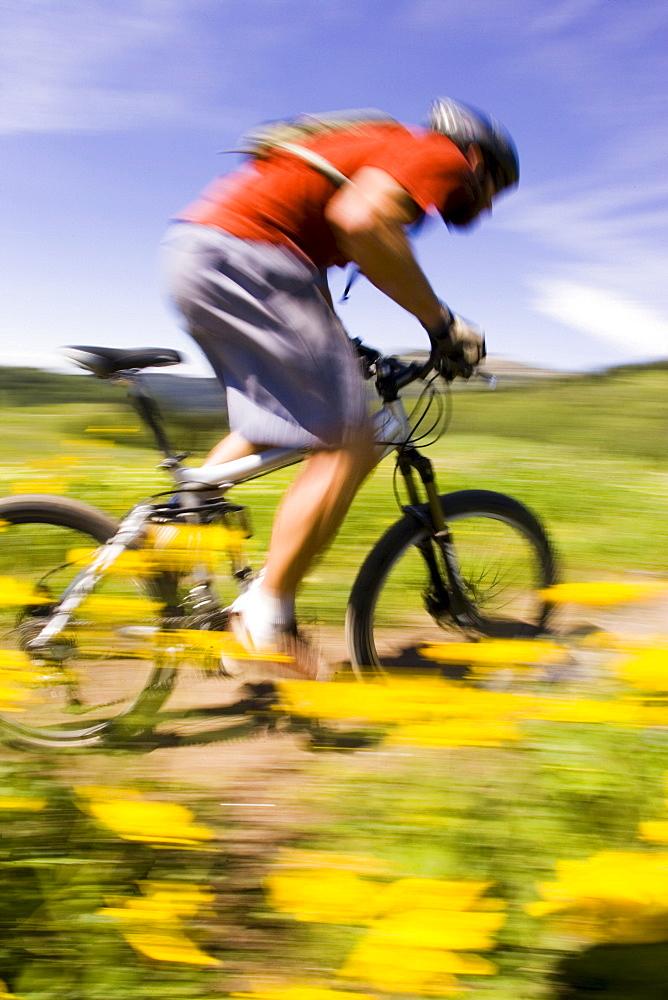 Man mountain biking in flowers, Tetons, Wyoming