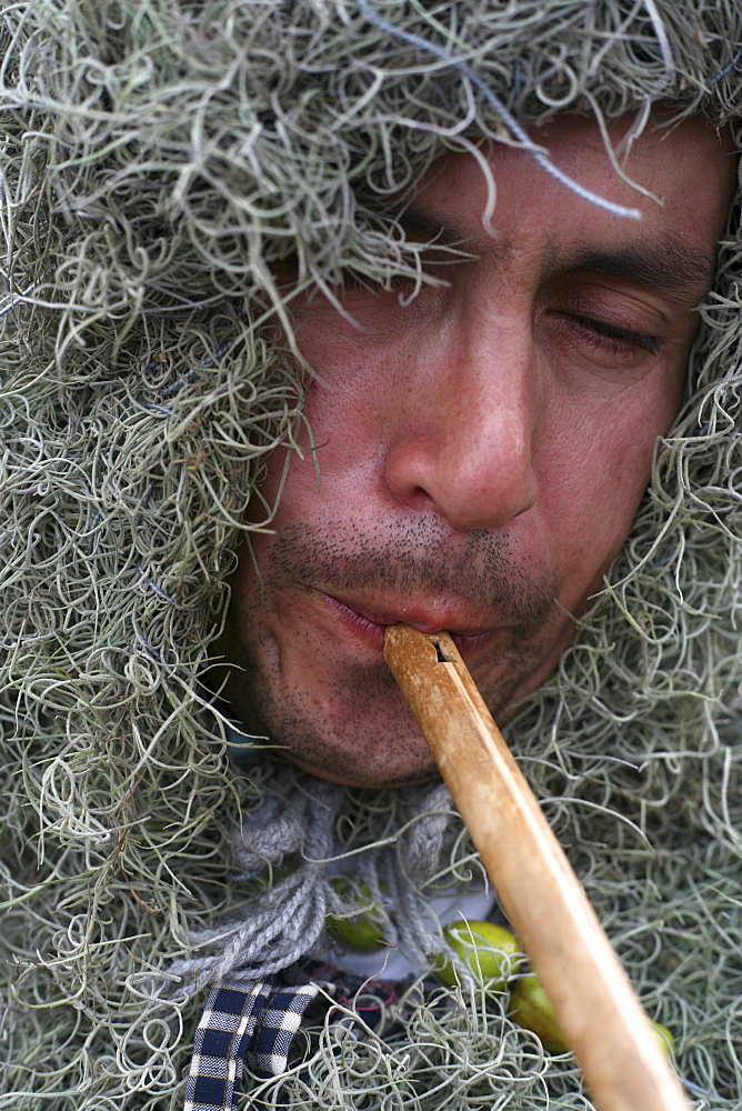A man dressed in a costume to represent nature plays flute during the fiesta of Corpus Christi, in Alangasi Ecuador, on June 10, 2007.   The fiesta of Corpus Christi is a mixture of Spanish, or Catholic, customs and pre-Colombian or indigenous customs.  I