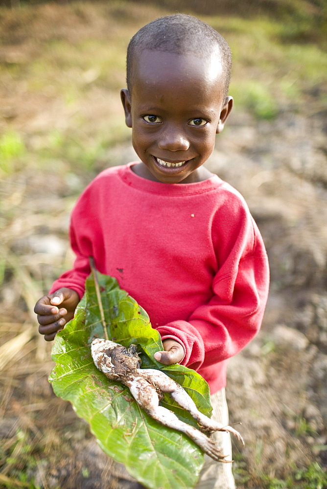 Young boy with a dead frog he found. Gbolokai is a small town of a few hundred people 20 minutes off the main road near Totota, all of its inhabitants fled during the long brutal civil war and have slowly returned after 2005 to try and rebuild their lives.