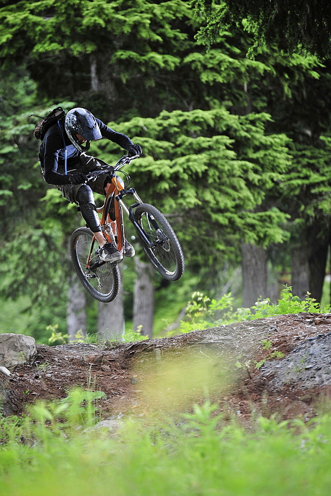 Downhill mountain biker rides the Big Spruce Trail at Alyeska Resort in Girdwood, Alaska June 2011.