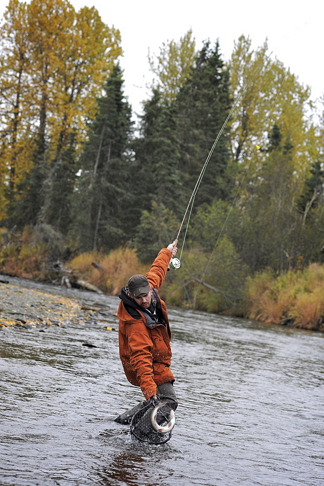 Fisherman with Dolly Varden char fished on Deep Creek on the Western Kenai Peninsula, Alaska September 2009.  Flowing into Cook Inlet north of Homer, the waters of Deep Creek and the Anchor River host late fall runs of wild steelhead.