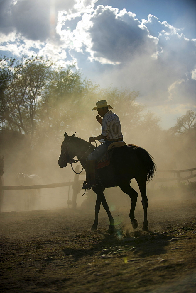 A cowboy wrangles a herd of horses and donkeys in the pastures of Hacienda Las Trancas, a 450 year old structure located near three Spanish Colonial cities of San Miguel de Allende, Guanajuato, and Dolores Hidalgo.