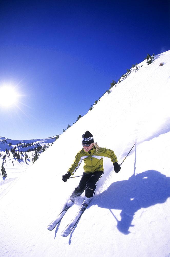 Hannah May skiing at Alta, Uttah, United States of America