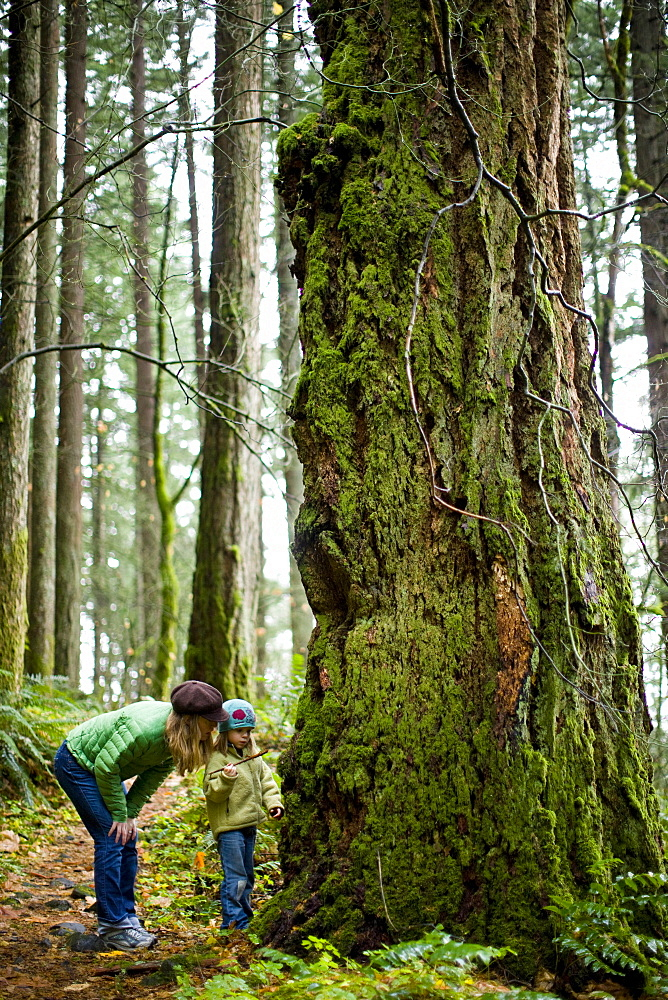 Mother and daughter on a hike in a temperate rainforest
