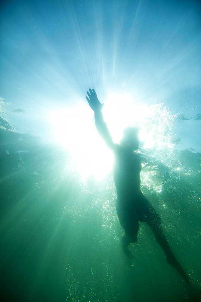 Underwater view looking up at a swimmer on the surface of a lake