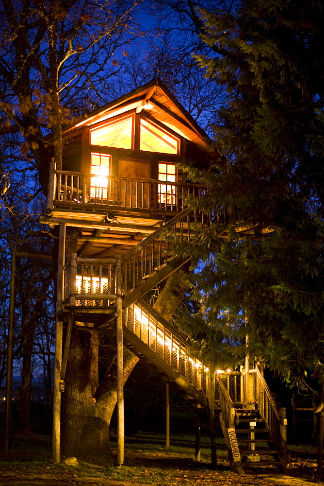 Image of a very tall tree house with stairs