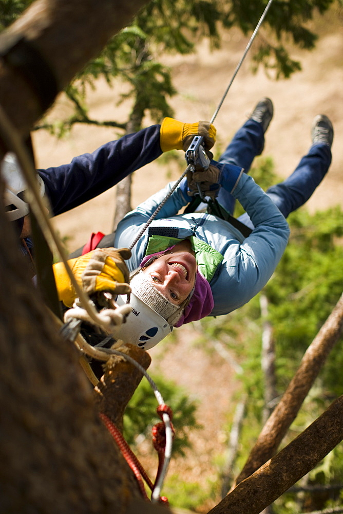 Adult woman hanging by harness and pulley in a tree awaiting a zip line run at a tree resort