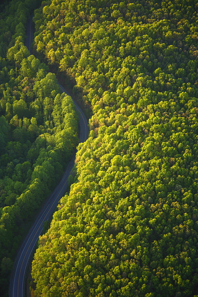 Aerial view of a curving road through a forest in Fayetteville, WV
