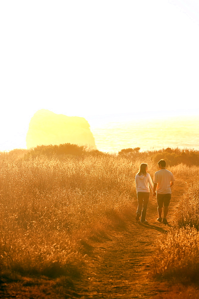 Holding hands in sunset, Big Sur, California