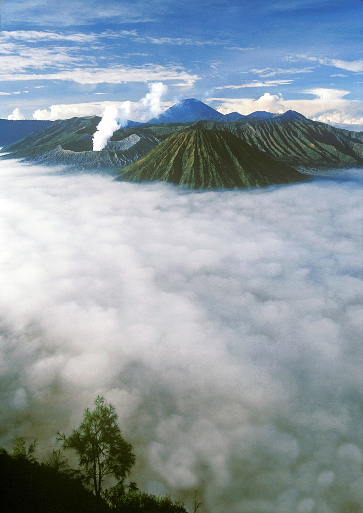 Morning light shines on the volcanic landscape of Tengger Caldera and Bromo Tengger Semeru National Park in Indonesia. Java,