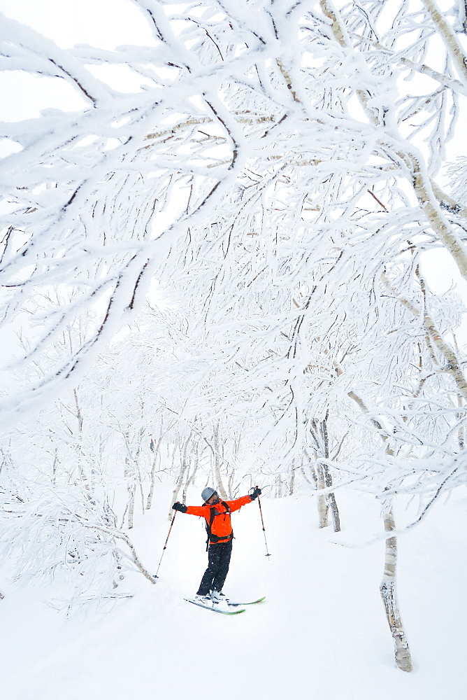 A female skier in is standing in a beautiful mountain landscape with snow covered trees near the ski resort of Rusutsu on Hokaido, Japan. Hokkaido, the north island of Japan, is geographically ideally located in the path of consistent weather systems that bring the cold air across the Sea of Japan from Siberia. This results in many of the resorts being absolutely dumped with powder that is renowned for being incredibly dry. Some of the Hokkaido ski resorts receive an amazing average of 14-18 metres of snowfall annually! With an average annual snowfall of over 14 metres, the Rusutsu Resort has some of the most incredible powder and tree skiing to be found anywhere in the world. Frequently the powder is incredibly dry; you blast right through it with virtually no resistance. Next by Kiroro was mentioned as one of the 20 must visit destination in Best of the World 2016 of National Geographic Traveler.